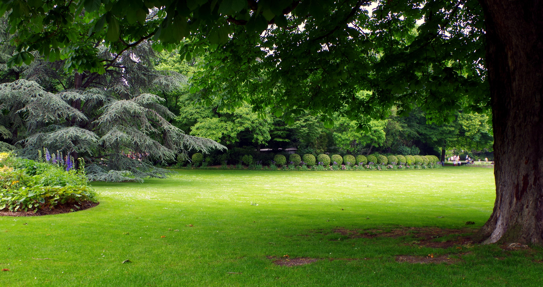 Conseils d 39 entretien pour la pelouse for Acheter une balancelle de jardin