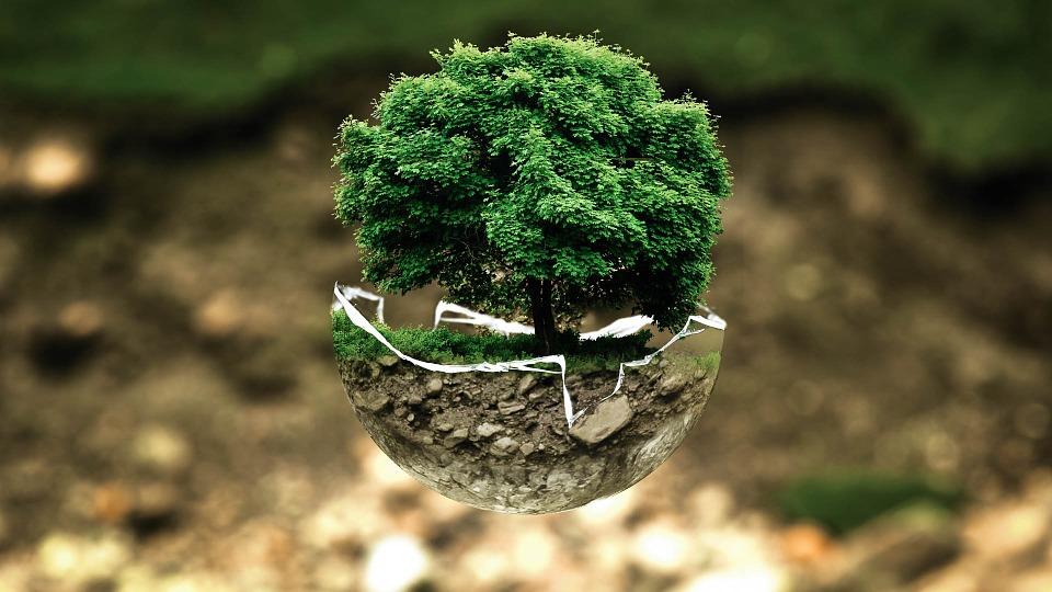 environnement-nature